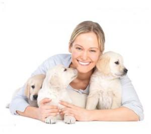 La esterilización de un perro no es algo caprichoso